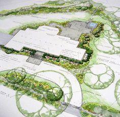Park Landscape Design