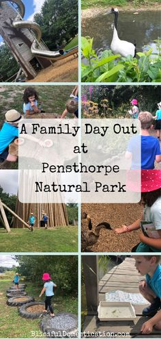A hidden gem in beautiful North Norfolk, Pensthorpe Natural Park is the perfect destination for a fun filled family day out getting closer to nature. Days Out For Couples, Days Out With Kids, Fun Days Out, Travel With Kids, Family Travel, Travel Uk, Travel Tips, Family Fun Day, Family Days Out