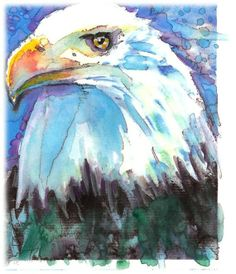 Bald Eagle Artist Signed Watercolor Print by CanyonWrensNest, $12.99