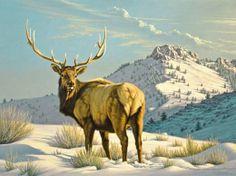 High Country Bull - Elk painting by Paul Krapf