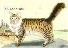 Guyana 1992