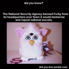 Those damn furbies. Spilling national secrets and what not.