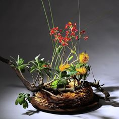 Floral Design, Artist, Plants, Inspiration, Biblical Inspiration, Floral Patterns, Artists, Plant, Inspirational