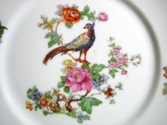 Vintage European Chinoiserie Exotic Bird Roses Medium Decorative Plate - Decorative Dishes