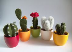 Cactus Plant Home Decor Gift Needle Felted Set of 5 by felttess