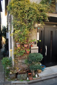 Note that the steps in the gap between the house. One house has complete concrete filling, the other offers a softer surface with steps on . Garden S, Garden Plants, Japanese Countryside, House Drawing, Exterior Remodel, Edible Plants, Color Studies, City Buildings, Plant Decor