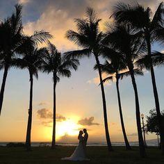 #サンセット#サンセット撮影#カピオラニパーク#夕景#ハワイウエディング #ハワイ挙式#プレ花嫁#挙式準備#ハワイヘアメイク#ハワイヘアメイクママノ #リゾ婚#前撮り#後撮り#ママノ#猫