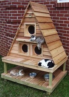 Check out this triplex home for multiple cats by 'Blythe Wood Works'. It has three separate compartments, large enough to comfortably house three to six cats, depending on their size, and an upper suite with a lounging ledge for the 'big cat' (which also serves as a weather shelter for the bottom two door entrances).