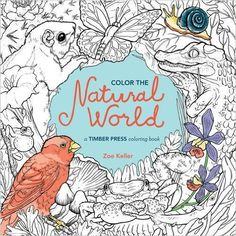 Color The Natural World Coloring Book Wander from temperate forests and oceans to deserts and prairies. You'll meet a host of intricately-drawn animals and birds. And you'll encounter a fun mix of bugs, fish, and plants, like the sea urchins found in the Pacific coast.  http://www.sparklyexpressions.com/shop-now.html#!/Color-The-Natural-World-Coloring-Book/p/61633739/category=17833347#1285