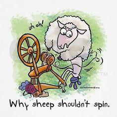 Spinning sheep