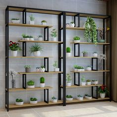 Multi storey Indoor A Living Room Chlorophytum Frame Bedroom Household Province Space Balcony Decorate Shelf To Ground - AliExpress Iron Furniture, Home Decor Furniture, House Plants Decor, Plant Decor, Hanging Orchid, Wooden Plant Stands, Partition Design, Garden Angels, Outdoor Flowers