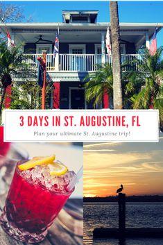 Visit Florida, Florida Vacation, Florida Travel, Florida Usa, Florida Trips, Usa Travel Guide, Travel Usa, Travel Tips, Travel Advice