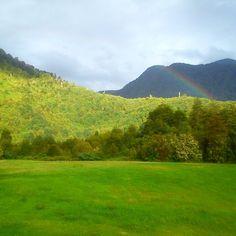 On instagram by juansilvapinto #landscape #contratahotel (o) http://ift.tt/1K8A7Z3 el Amarillo Parque Pumalin Sur. Región de los Lagos Chile. Carretera Austral.  #ConXperiaDisfrutoChile #carreteraustral #parquepumalin #pumalin #amazingworldwide #amazing #traveler #travel #travelsland #traveladdict  #likealways #like #like4like #likeforlike #instalike #instachile #insta_crew #instatravel #mochilero #viajero #paisajes #paisajesdechile