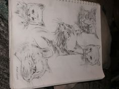 """Cat Collage"" Pencil, Early 2000's"