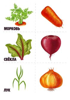 memory6 Numbers Preschool, Preschool Activities, Fruit And Veg, Fruits And Vegetables, Diy Toys And Games, Vegetable Crafts, Art For Kids, Crafts For Kids, Russian Language