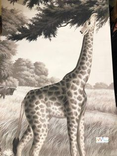 Giraffe, Animals, Painted Wallpaper, Antique Wallpaper, Hand Painted Walls, The Originals, Luxury, Wall Papers, Brazil