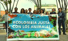 Vamos por una #ColombiaJustaConLosAnimales
