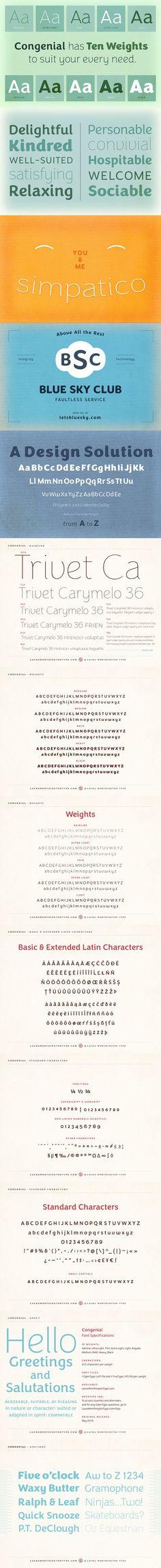 Congenial Hairline. Sans Serif Fonts. $19.00