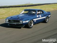 View Mdmp 1301 12 1969 Ford Mustang Shelby Gt 500 Motion - Photo 45246402 from 1969 Ford Mustang Shelby GT 500 - A Legend Lives On