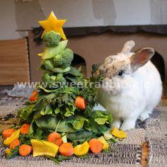 Eigentlich für Kaninchen - aber ich denk meine Schneggies mögen das auch...