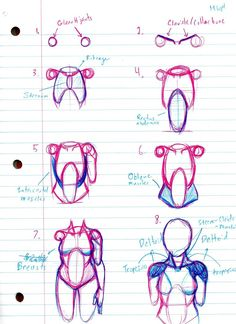 How I currently draw female torso figures by TheStrangestofAll #sketch #reference #torso #female