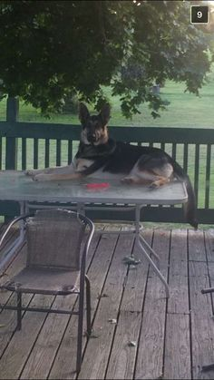 I don't always lay down, but when I do, it's on a patio table