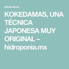 KOKEDAMAS, UNA TÉCNICA JAPONESA MUY ORIGINAL – hidroponia.mx