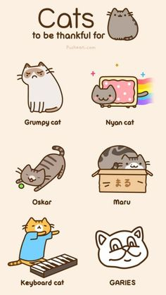 Pusheen: Cats to be thankful for