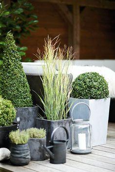 Accumulation de pots sur la terrasse
