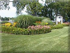 Bluegrass Daylily Gardens