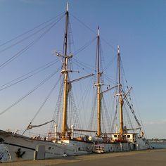 Hafen von Stralsund - alte Traditionssegelschiffe - Baltic Sea, Tall Ships, Germany Travel, Sailing Ships, Wilderness, City, Germany, Germany Destinations, Sailboat