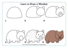 Why not spend a little time learning how to draw your own wombat today? They look pretty cute and cuddly - although I gather the last thing a wild wombat wants is cuddles! Love Drawings, Easy Drawings, Animal Drawings, Drawing For Kids, Art For Kids, Learn Drawing, Drawing Lessons, Directed Drawing, Echidna