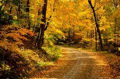 Take me home country road.