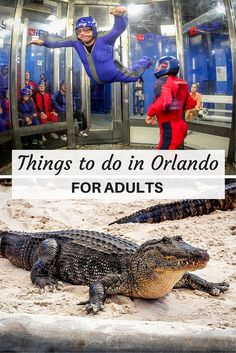 It's not all just Disney, Disney, Disney. Here are some fun things to do for adults in Orlando, Florida.