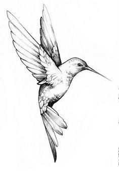 Hummingbird Tattoo Black, Hummingbird Drawing, Hummingbird Pictures, Mom Tattoos, Future Tattoos, Body Art Tattoos, Tree Tattoos, Deer Tattoo, Raven Tattoo