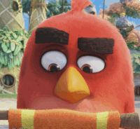 Lots of emotion - but mostly anger - on the official Angry Birds GIPHY channel. Cute Cartoon Characters, Cartoon Gifs, All Angry Birds, Dreamworks, Bird Gif, Cute Birds, Disney Love, Walt Disney, Animated Gif
