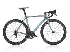 Diamante Purple Label  | Basso Bikes