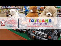 Si possono vendere giocattoli online? Toysland passa dalla vendita tradizionale all'e-commerce. Scopriamo come si sono evoluti e come vedono il futuro