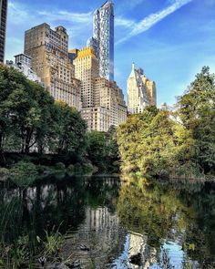 Central Park by @scottlipps #nyc