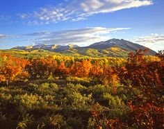 West Beckwith Mountain near Crested Butte, Colorado