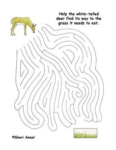 Maze - What Does the Deer Eat?