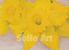Jonquils 1, 1936 - Georgia O'Keeffe reproduction oil painting