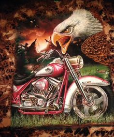 Harley-Davidson M Bike?Eagle Tye-dyed Tan cotton Short sleeve 2