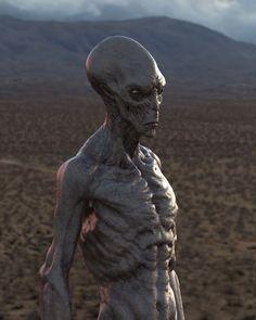 Alien Aesthetic, Alien Concept Art, Demon Art, Aliens And Ufos, Alien Worlds, Alien Creatures, Alien Art, Fantasy Art, Creepy