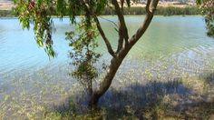 Una giornata al lago...