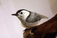 Nuthatch Bird Hand Carved Wood Sculpture Wall by BerlinGlass