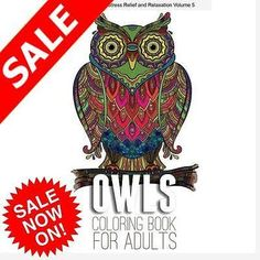 Owls To Color For Adults