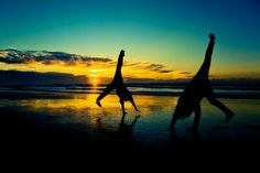 This could be you and your friend after you find your perfect Hawaiian getaway home.  bigislandreale.com can show you.