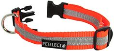 Petflect Reflective Collar Fluorescent Orange Medium ** Visit the image link more details. Note:It is affiliate link to Amazon. #pretty