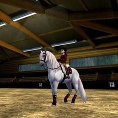 I love dressage Diy Tv, Star Stable Horses, Horse Videos, Photo Competition, Horses For Sale, Horse Girl, My Ride, Dressage, Beautiful Horses